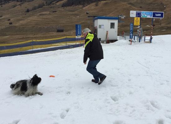 ... im Schnee spielen ...