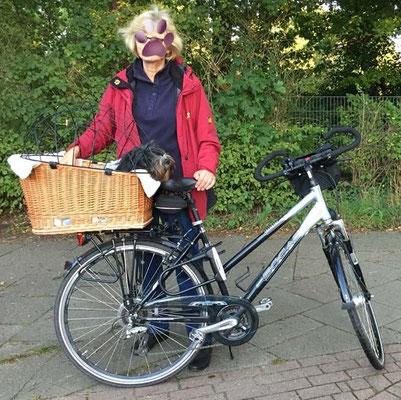 Frauchen hat mir einen Fahrradkorb gekauft. Sie hat ihn gemütlich ausgepolstert.