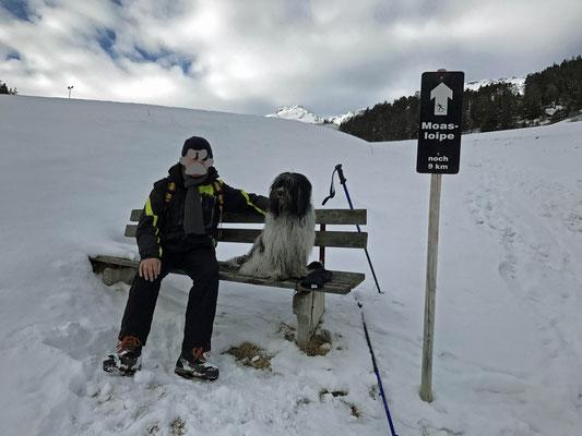 Dann hat  es geschneit und wir sind zur Norbertshöhe gegangen. Da wollte ich nach der Sache im Januar 2013 eigentlich nicht wieder hin ...