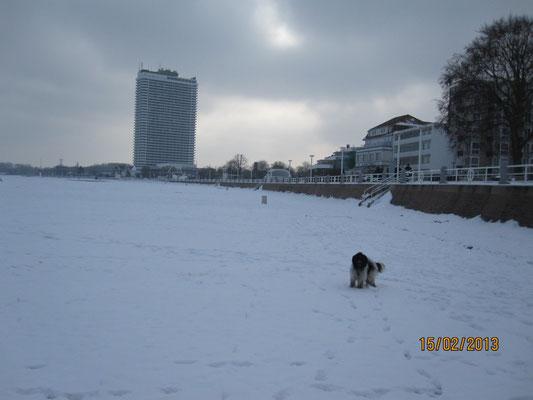 Wir waren am Strand, aber es war kein Sand da, nur Schnee!
