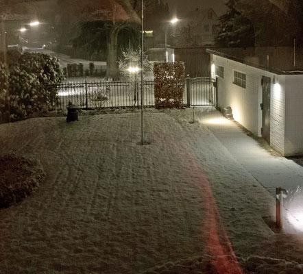Kleines Schneechen