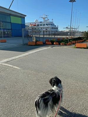 Wir sind angekommen, da ist das Schiff.