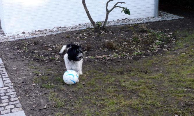 Das ist der Ball, ...
