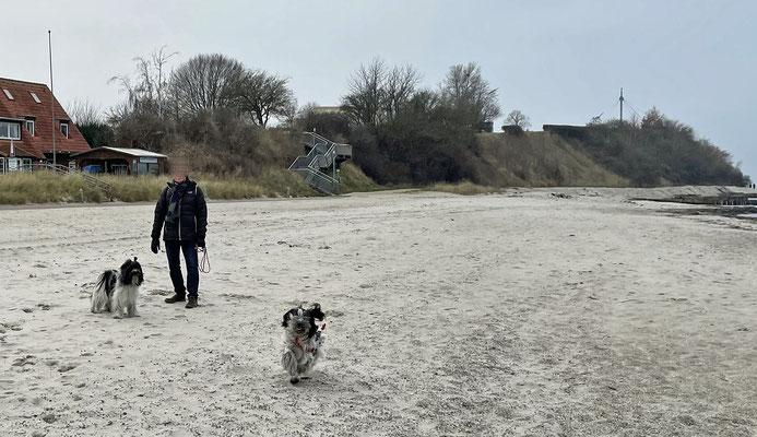 ... und wir sind am Strand entlang ...