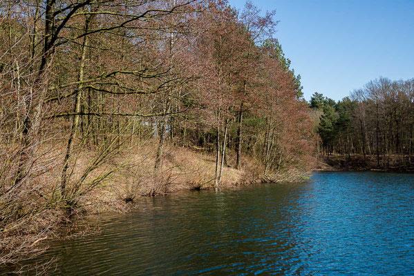 Rheinefotografie - Rheine - Foto - Hängemühlensee