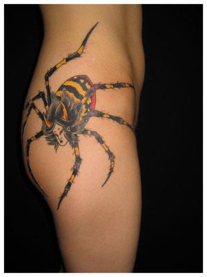 蜘蛛・女性刺青