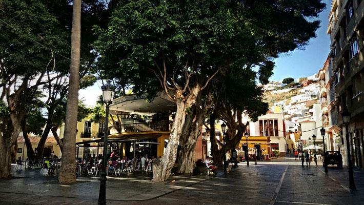 Plaza de la Constitution in San Sebastian und mein Lieblingscafe unter einem uralten Blätterdach
