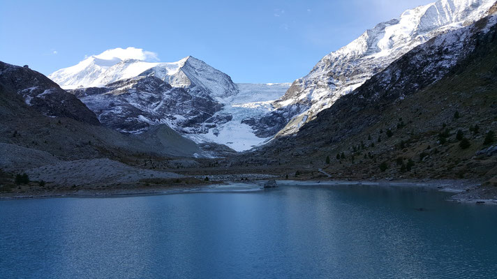 Im Hintergrund der Turtmanngletscher und das Bishorn