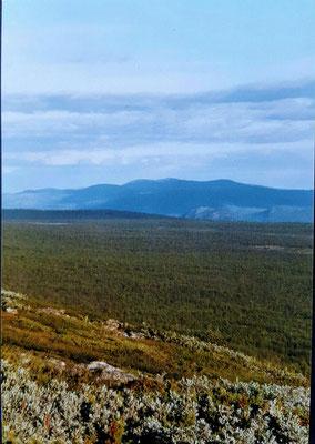 Der Blick auf die zurückgelegte Strecke. Kurz vor der blauen Bergkette liegt die Straße von der wir gestartet sind.