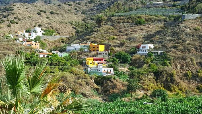 In der Gemeinde Hermigua, Bananenplantagen bestimmen hier die Landschaft und das Leben