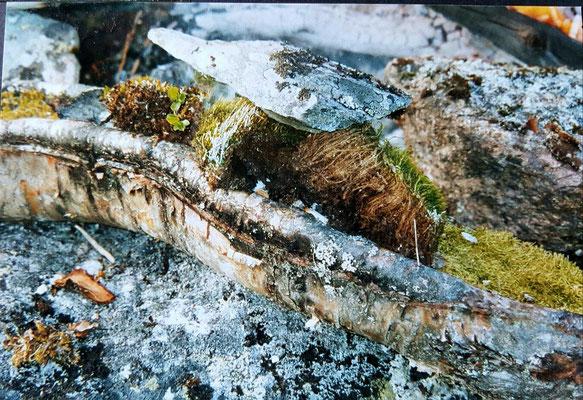 ...das Feuer hilft mir einen Topf zu brennen...