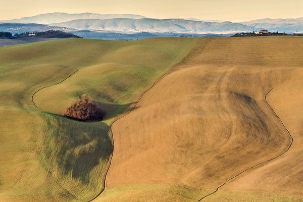 Crete Senesi, Winter No. 23