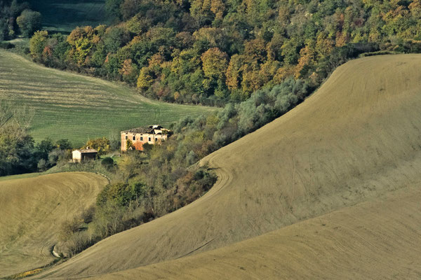 Crete Senesi, Autumn No. 14