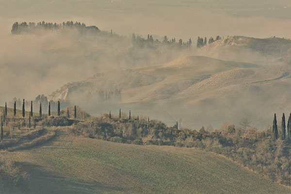 Crete Senesi, Winter No. 7