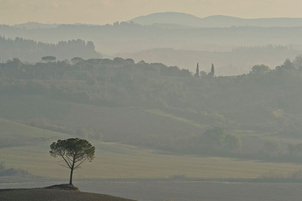 Crete Senesi, Autumn No. 5