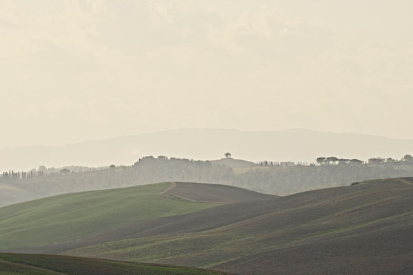 Crete Senesi, Autumn No. 28