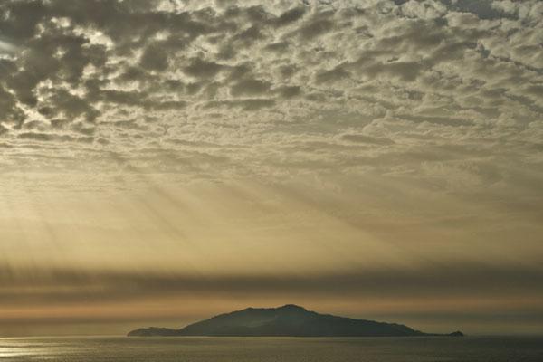 Isola Ischia, Summer No. 1