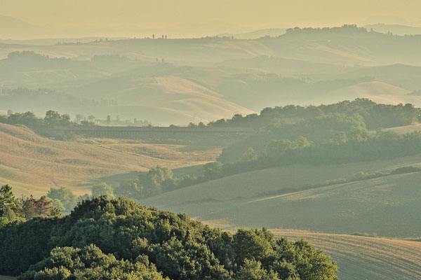 Crete Senesi, Summer No. 17