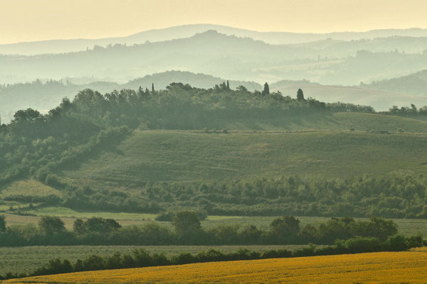 Crete Senesi, Summer No. 7