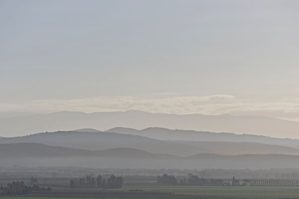 Maremma, Winter No. 15