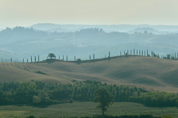 Crete Senesi, Summer No. 2