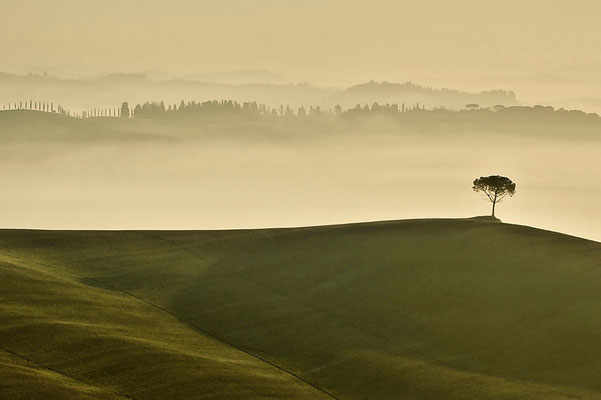Crete Senesi, Autumn No. 17