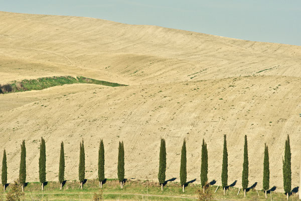 Crete Senesi, Winter No. 27