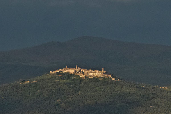 Montepescali, Spring No. 08