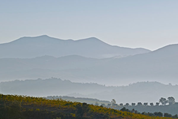 Monte Amiata, Autumn No. 3