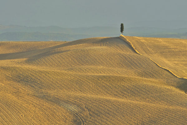 Crete Senesi, Autumn No. 1