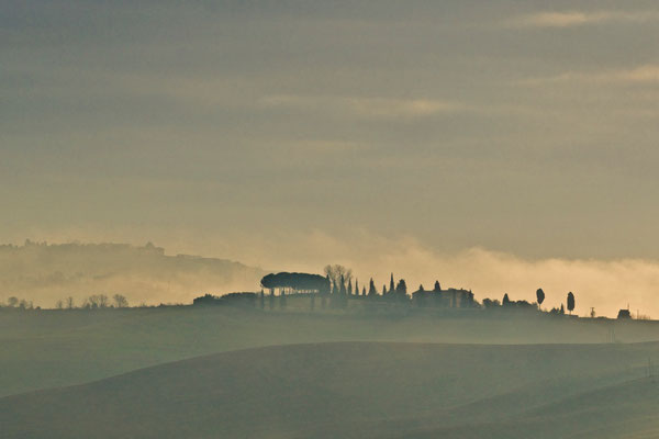 Crete Senesi, Winter No. 38