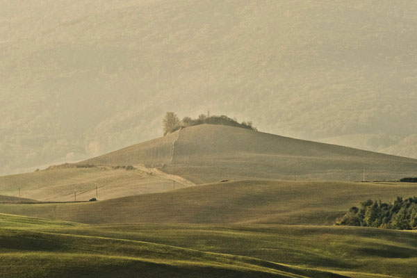 Crete Senesi, Autumn No. 18