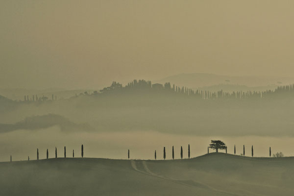 Crete Senesi, Winter No. 21