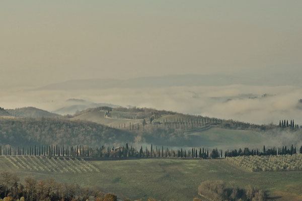 Crete Senesi, Winter No. 16