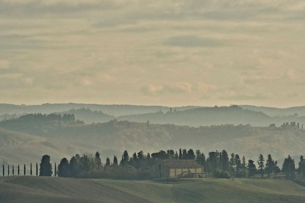 Crete Senesi, Autumn No. 6