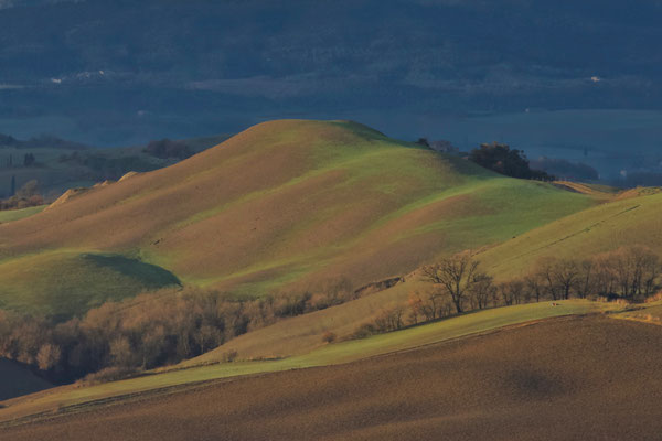 Crete Senesi, Winter No. 22