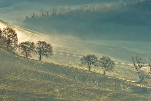 Crete Senesi, Winter No. 17