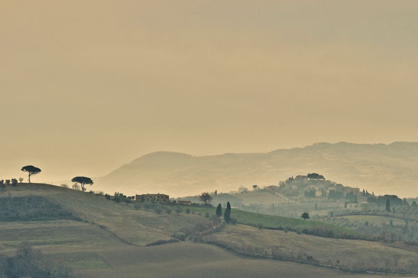 Crete Senesi, Winter No. 9
