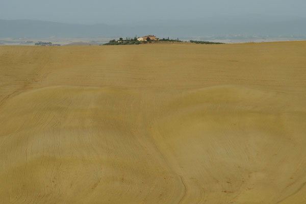 Crete Senesi, Autumn No. 19