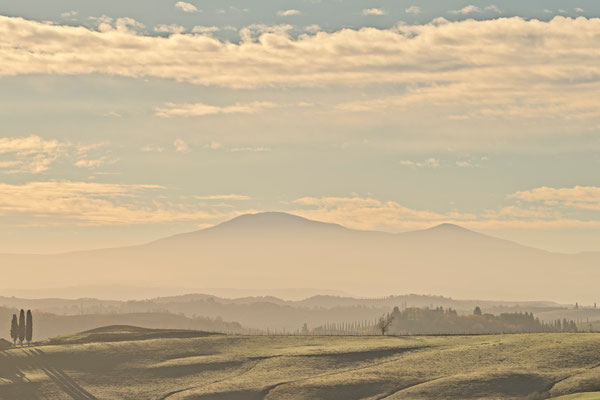 Crete Senesi, Winter No. 35