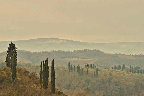 Crete Senesi, Winter No. 15
