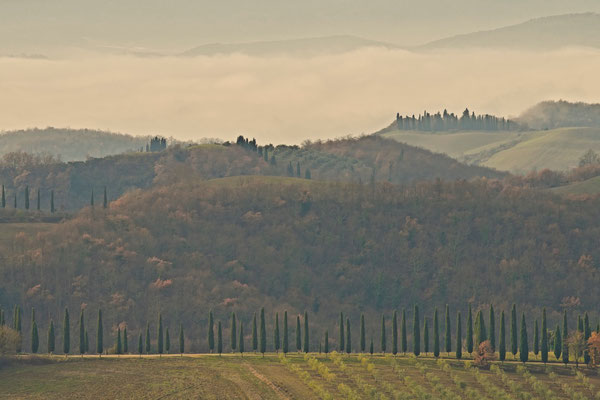 Crete Senesi, Winter No. 32