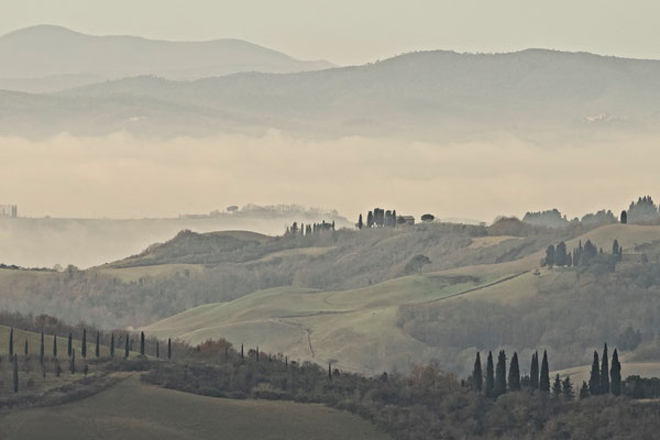 Crete Senesi, Winter No. 39