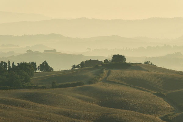 Crete Senesi, Summer No. 10