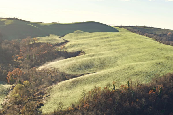 Crete Senesi, Winter No. 36