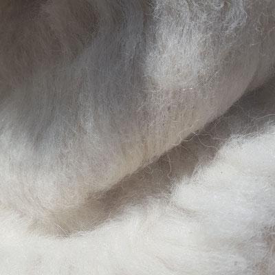 Alpakavlies