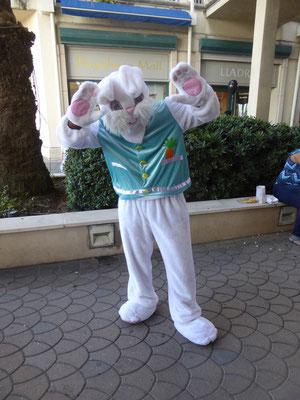 Der Easter Bunny, ist nur an wenigen Tagen im Jahr auf der Insel anzutreffen!!