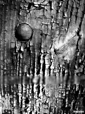le long barbare photographie - le temps - détail de porte - baume les messieurs - jura - france - 20070204