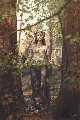Forest Dryad III