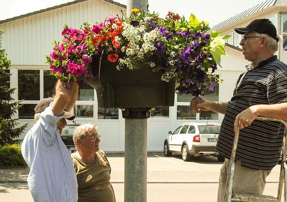 Blumen auswählen, besorgen, anbringen und später regelmäßig gießen.